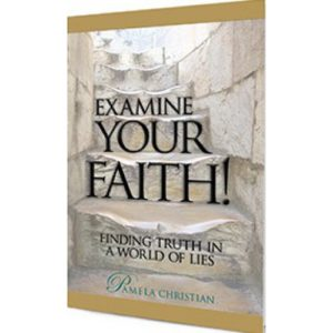 Examine Your Faith by Pamela Christian