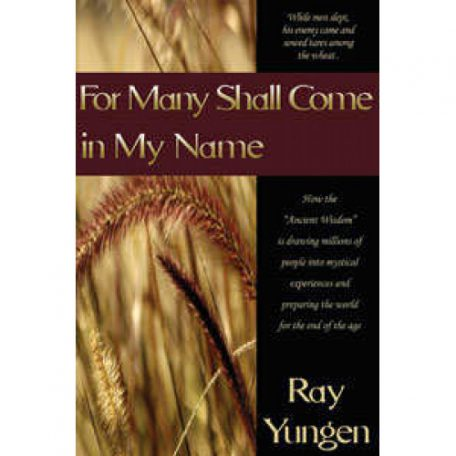 For Many Shall Come in My Name by Ray Yungen