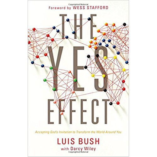 The Yes Effect by Luis Bush