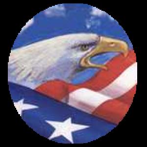 Save America Ministries Donation