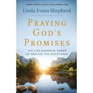 Praying God's Promises by Linda Evans Shepherd
