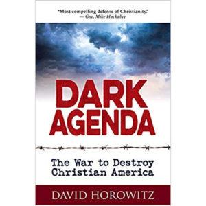 Dark Agenda by David Horowitz